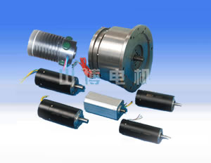 Military brushless motor